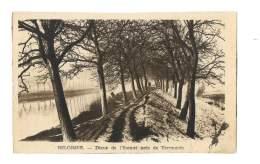 Digue De L'Escaut Pres De Termonde - 108 - Temse