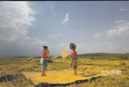 ASIE--CHINE-CHINA--the Rhythm Of The Harvest--shao Yu--voir 2 Scans - Chine