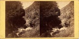 Tiefenbach, Mosel, Wasserfall - Stereoscopic