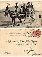 CPA PALERMO Carro Siciliano . ITALY (468527) - Unclassified