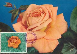 D31231 CARTE MAXIMUM CARD 1966 KHOR FAKKAN SHARJAH - SALMON ROSE CP ORIGINAL - Rose