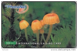 Thailand Phonecard PhoneNet  Pilze Mushrom - Thaïlande
