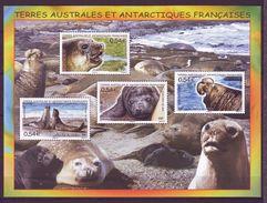 T.A.A.F. 2008  -B F19 - Faune Antarctique  - Neuf ** - Blocs-feuillets