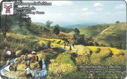 Thailand BTS Card Eisenbahn Train Ticket One Day Pass - Suffiecant Chiang Mai - Eisenbahnen