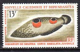 Col 4/ Nouvelle Calédonie PA  N° 81 Neuf XX MHN  Cote 6,00€ - Unused Stamps