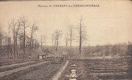 78 LE HAMEAU DE CRESSAY LES CRESSONNIERES      ///////    REF AOUT 17 / N° 3809 - France