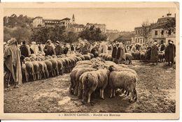 ALGERIE - MAISON CARREE - Marché Aux Moutons - Scènes & Types
