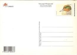 Portugal ** & Postal Stationary, Marrequinha, Anas Crecca, Vasco Da Gama, Lisboa 1998 (3225) - Entiers Postaux