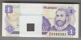 NICARAGUA 1991 1 Centavo Bundle 100pcs UNC. Billets P 167 Wholesale - Bankbiljetten