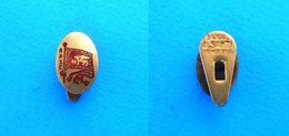 REYER VENEZIA MESTRE - Italy Basketball Club Buttonhole Pin Badge Basket-ball Baloncesto Pallacanestro Distintivo Italia - Basketball