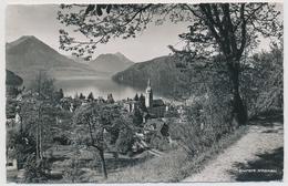 1956 Vitznau Am Vierwaldstättersee Mit Stanserhorn Und Bürgenstock - LU Luzern