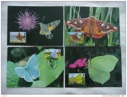 WWF Guernsey Butterflies And Moths Papillons Schmetterlinge  1997 CM MK MC Maxi Maximum Card Carte Maxicard Maximumkarte - Maximum Cards
