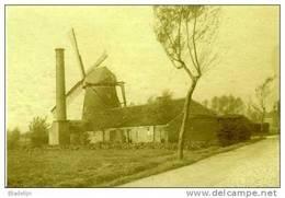 ZELE (O.Vl.) - Molen/moulin - Zeldzame Opname: De Gewezen Rosseelsmolen Tijdens 1914-1918, Met Wieken, Schoorsteen E.d. - Zele