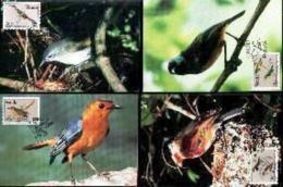 VENDA, 1991, Mint Maxi Cards, MI Nr.94-97,  Birds Of Venda - Venda