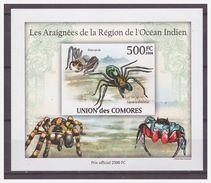 0390 Comores 2009 Spinnen Spider Araignees S/S MNH Imperf - Spinnen
