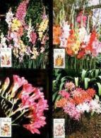 RSA, 1985, Mint Maxi Cards, MI Nr. 30-33, Flowers - South Africa (1961-...)