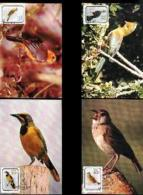 RSA, 1990, Mint Maxi Cards, MI Nr. 103-106, Birds - Brieven En Documenten