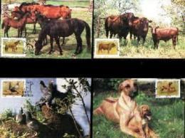 RSA, 1991, Mint Maxi Cards, MI Nr. 107-111, Animals - Zuid-Afrika (1961-...)