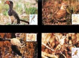 SWA, 1988, Mint Maxi Cards, MI Nr 74-77, Birds - South West Africa (1923-1990)