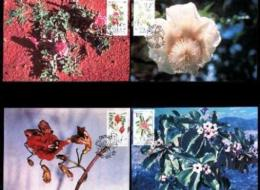 SWA, 1990, Mint Maxi Cards, MI Nr 90-93, Flowers - South West Africa (1923-1990)