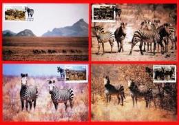 NAMIBIA, 1991, Mint Maxi Cards, Sa Nr. 35-38, Nature Conservation F3835 - Namibië (1990- ...)