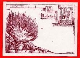 NAMIBIA,  Mint Maxi Cards,  Postcard Mint And Protea, F3843 - Namibia (1990- ...)