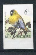 Belgie Buzin Birds ONGETAND Non-dentelé 6fr 2665 Met Velrand Onderaan RRR - 1985-.. Oiseaux (Buzin)
