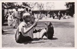 Morocco Casablanca Dresseur De Singes Young Boy With Monkey Photo - Casablanca
