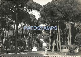 76498 ITALY FREGENE PINE FOREST CIRCULATED TO ROMA POSTAL POSTCARD - Italia