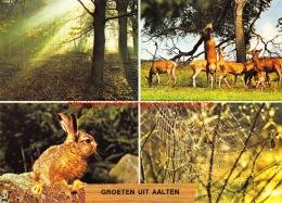 Groeten Uit Â… - Aalten - Aalten