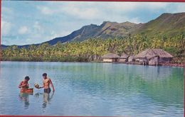 Tahiti Polynésie Française Pahure Tahaa - Polinesia Francese