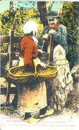 LA NORMANDIE PITTORESQUE N° 1857 - France