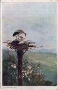 F. Creczliewiez Pinx - 1919 ( Cigognes) - Oiseaux