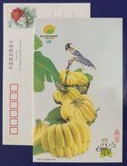 Banana,CN 01 China Int´l Fruit & Vegetable Fair 2001 Advertising Postal Stationery Card - Fruits