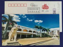 Elephant Sculpture,coconut Palm Tree,China 2009 Yangpu Seaview Garden Hotel Advert Pre-stamped Card Specimen Overprinted - Elephants