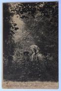 45 : Les Mauves - La Cueillette - Écrite De Meung-sur-Loire - 1903 - Animée : Petite Animation - (n°8618) - France