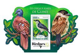 Guinea. 2017 Rare Birds Of Guinea. (322b) - Oiseaux