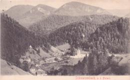 ALTE AK  SCHWARZENBACH A.d. Pielach / NÖ  - Gesamtansicht -  Gelaufen 1906 - Austria