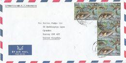 United Arab Emirates UAE 1991 Dubai Rabbit Fish Cover - Verenigde Arabische Emiraten