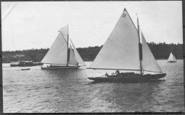 1912 Sweden Stockholm Olympics Official Postcard No 319 Swedish Sailing 'Boheme' - Olympic Games