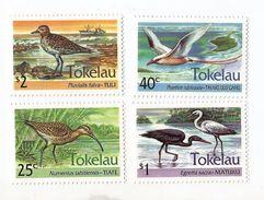 1994 Tokelau  Birds Complete Set Of 4 +  Souvenir Sheet  MNH - Birds