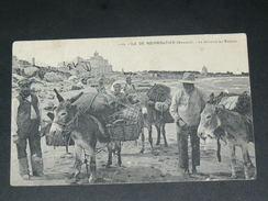 ILE DE NOIRMOUTIER   1910  /  METIER PECHEUR / RAMASSAGE DU VARECH  / CIRC OUI - Ile De Noirmoutier