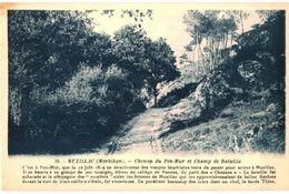CPA N°6572 - MUZILLAC - CHEMIN DE PEN MUR ET CHAMP DE BATAILLE - 1815 - GUERRES DE VENDEE - Muzillac