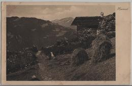 Heimat - Schuders, Alphütte - Photo: D. Mischol No. 2187 - GR Grisons