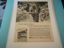 ANCIENNE PUBLICITE  MARGARINE ASTRA RICHESSE DES TROPIQUES SUR VOTRE TABLE - Posters