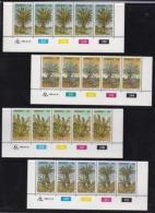 TRANSKEI, 1980, Mint Never Hinged Stamps In Control Blocks, MI 71-74 , Cycads, X216 - Transkei