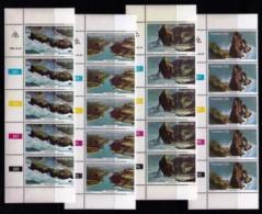 TRANSKEI, 1980, Mint Never Hinged Stamps In Control Blocks, MI 79-82 , Birds, X218 - Transkei