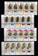 TRANSKEI, 1981, Mint Never Hinged Stamps In Control Blocks, MI 88-91 , Medicinal Plants, X219 - Transkei