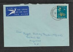 S.Africa,  Domestic Air Mail Cover, 5c Baobab, ALEXANDER BAY 26 V 71 C.d.s. > Huguenot - South Africa (1961-...)