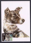 BULGARY 2011 MAXIMUM CARD SPACE ANIMAL ON THE SPACE DOGS - Europe